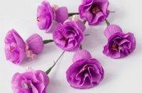 делаем по аналогии еще 4-6 цветков