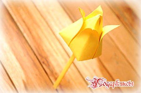 тюльпан с лепестками